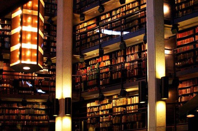il-library-8